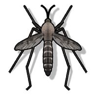 Best Anti Mosquito App Android