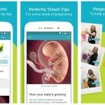 10 Best Pregnancy Tracker Apps (Android/iPhone) 2020