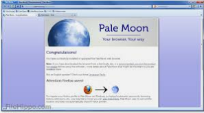 best lightweight browser windows 2019