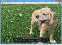 Best Photo Viewer Software Windows 10