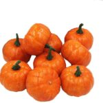 Top 15 Best Mini Pumpkins 2021