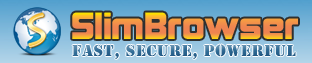 Firestick Browser 2020