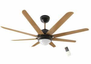 Best Ceiling Fan with Light India 2020